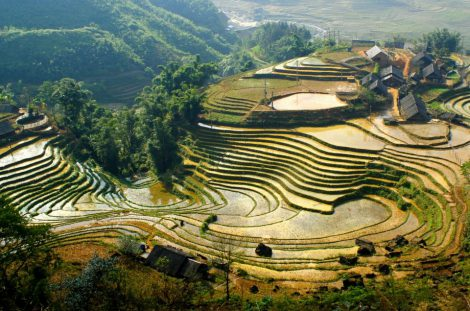 Sapa stunning trek and great combination of home stay & Topas Eco Lodge 4 days