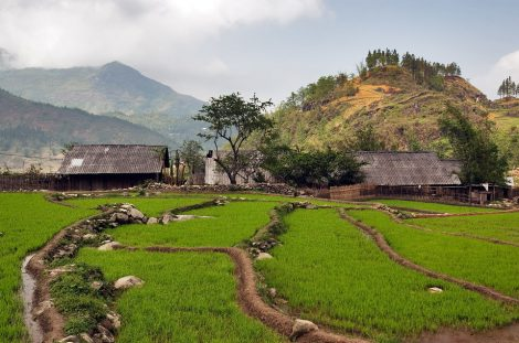 Northern Vietnam with Sapa Discovery Tour – 6 days